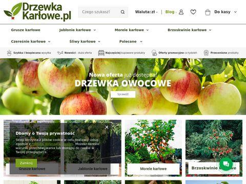 DrzewkaKarlowe.pl twój sklep internetowy