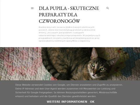 Dlapupila.com.pl gamawit