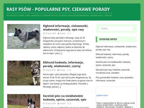 iPies.pl rasy psów blog